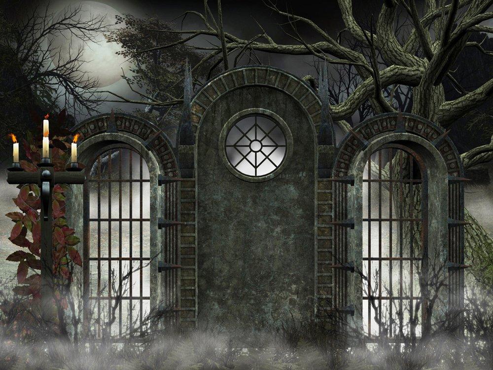 Backdrop Gothic  3m x 2.3m $60 Incl frame & gst