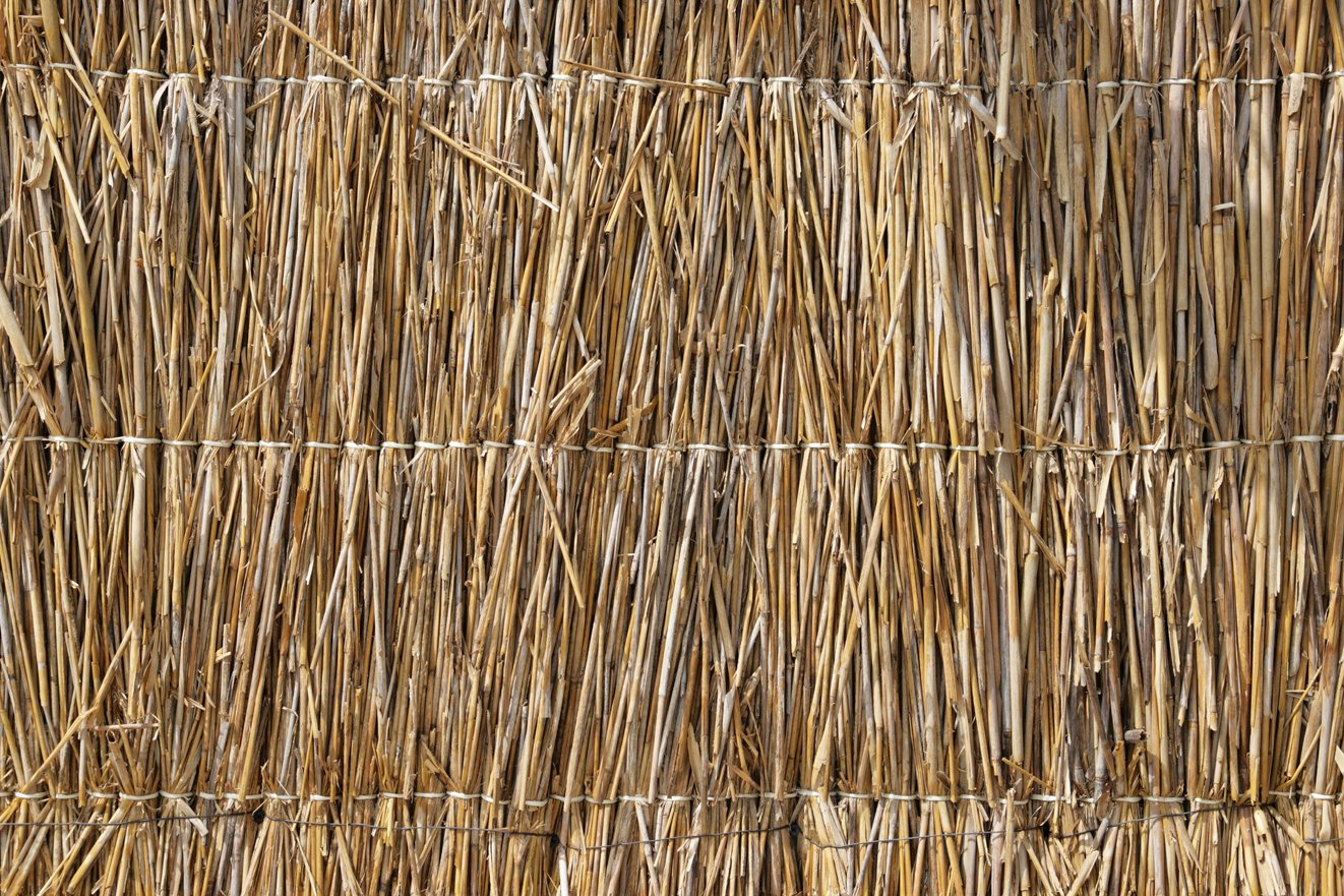 Backdrop Luau Thatch x2 Available  3m x 2.3m $60 Incl frame & gst