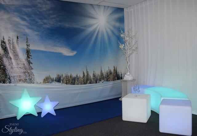 Winter Wonderland Backdro