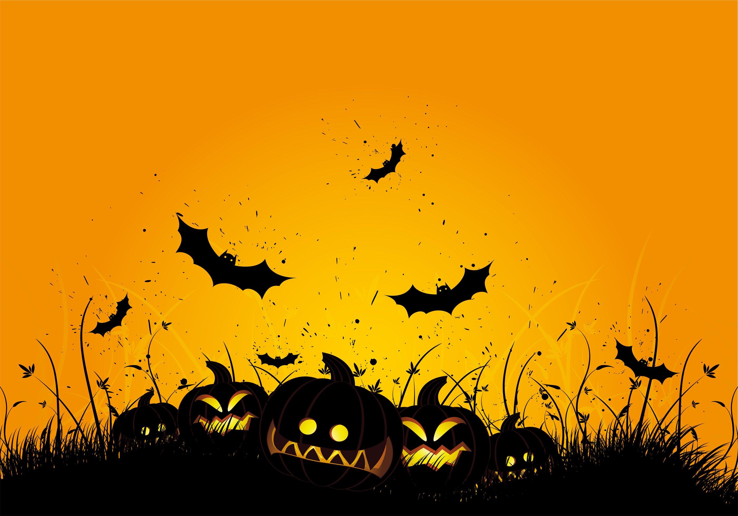 Backdrop Halloween Bat  3m x 2.3m $60 Incl frame & gst