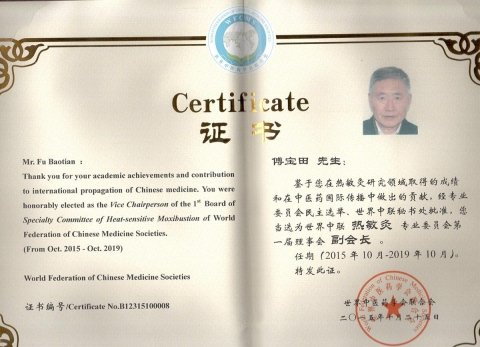 INSIGNITO DELLA CARICA DI VICEPRESIDENTE DELLA WFCMS:  WORLD FEDERATION OF CHINESE MEDICINE SOCIETIES
