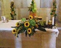 piante e fiori torresi
