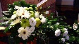 composizioni floreali, frutta