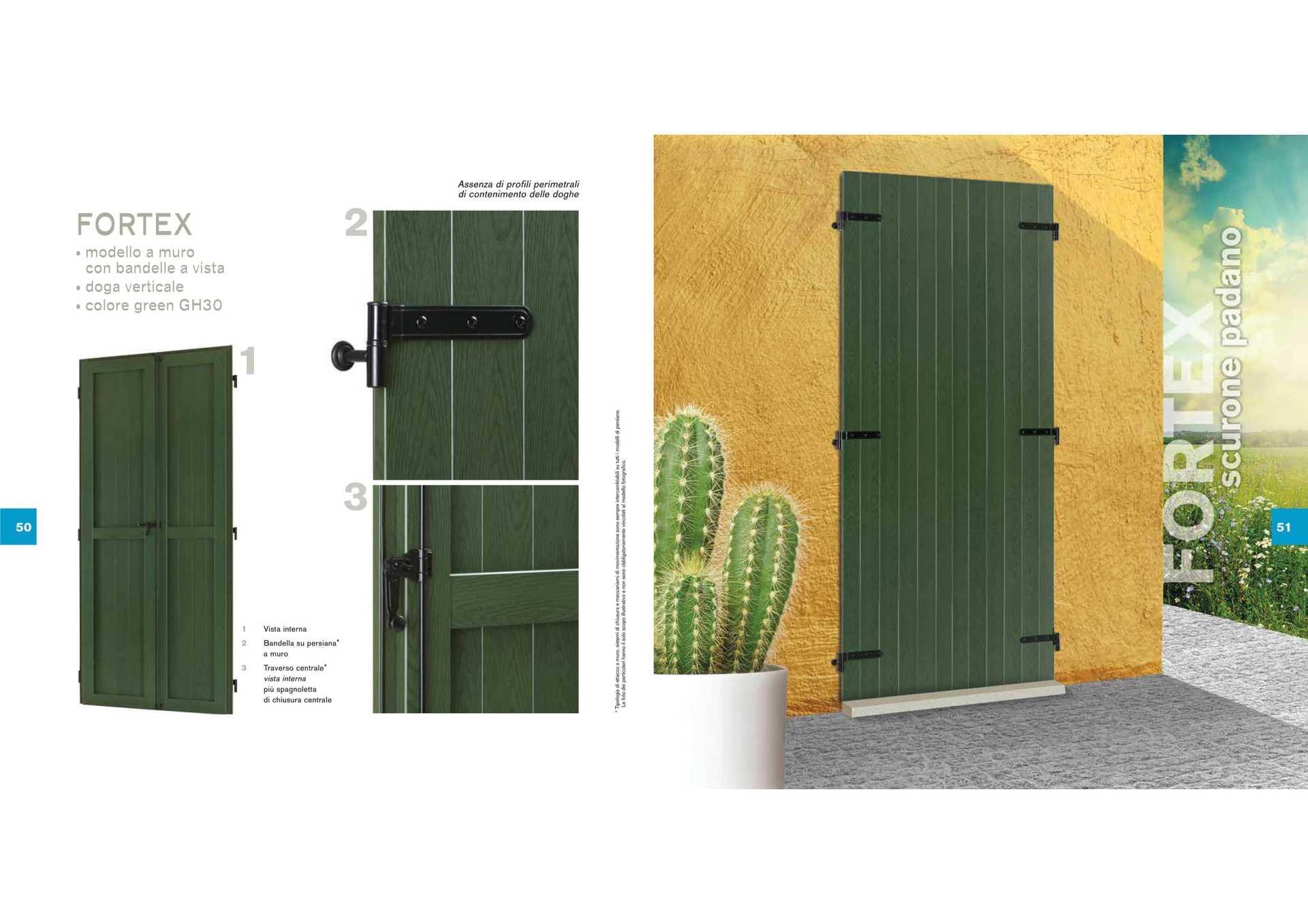 brochure con descrizione persiana verde e cactus accanto