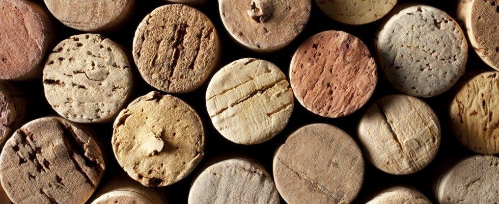 Produzione vino Cortese di Gavi