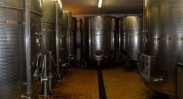 Produzione vino