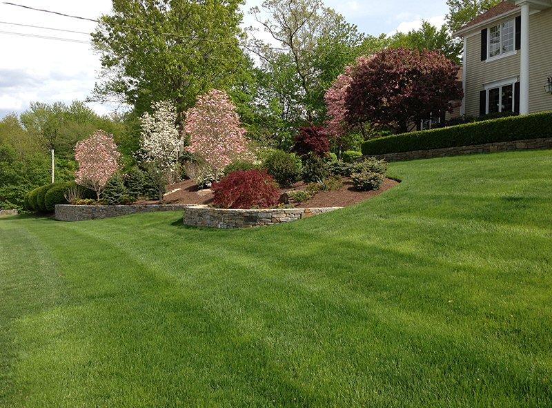 Lawn Maintenance Darien, Westport, New Canaan, CT