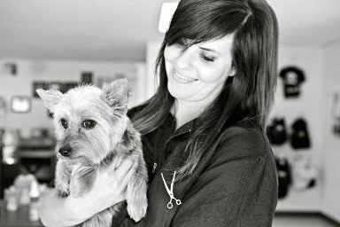 Pet and Dog Grooming in Ankeny Iowa