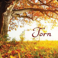 Karen Turner Torn historical drama regency romance author novel