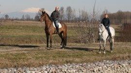 istruttori ippici, escursioni a cavallo, passeggiate a cavallo