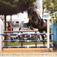 lezione di equitazione, preparazione gare sportive