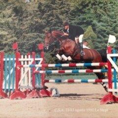 istruttore circolo ippico, presidente circolo ippico Baizina, campione italiano master cavallo iberico