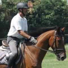 maneggio coperto, lezioni di equitazione, salto ostacoli
