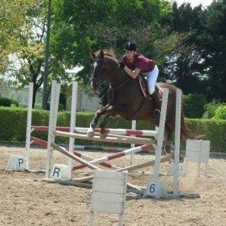 stalle, istruttori equestri