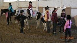 pre agonistica equestre