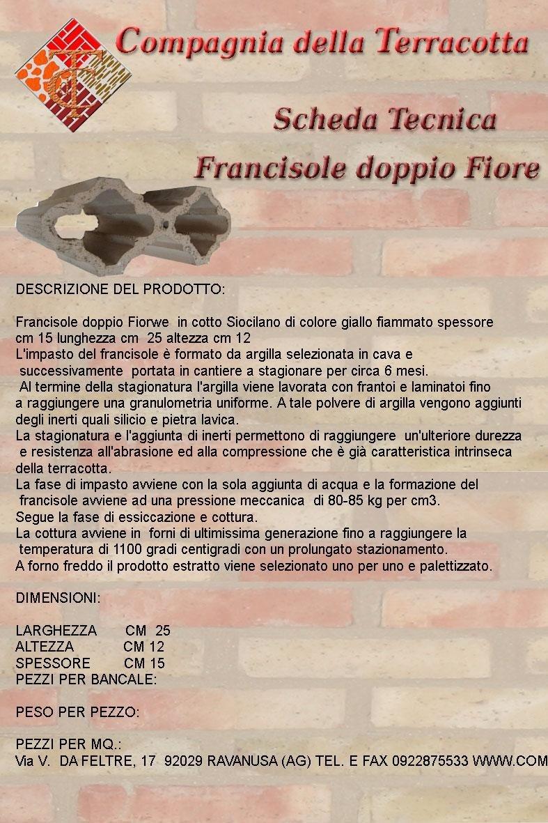 Francisole doppio fiore