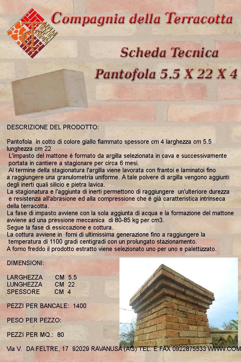 PANTOFOLA-5,5-X-22