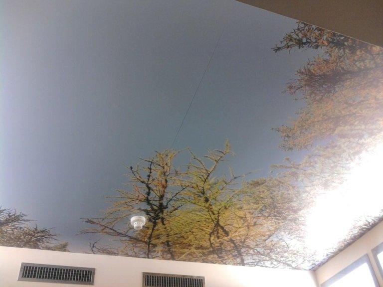 Decorazione ospedale bz