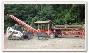 tree service Albany, NY