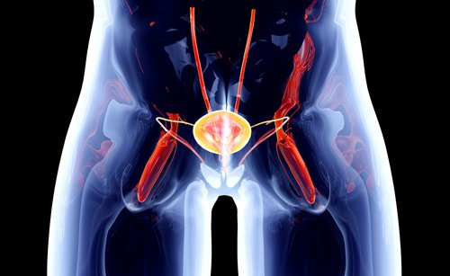 Southeast Urology provides adult reliable services in Juneau, AK