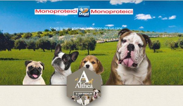 cani in un campo con marchio Althea in primo piano