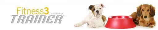 due cani e una ciotola rossa