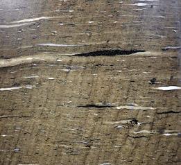 Marble Amp Granite