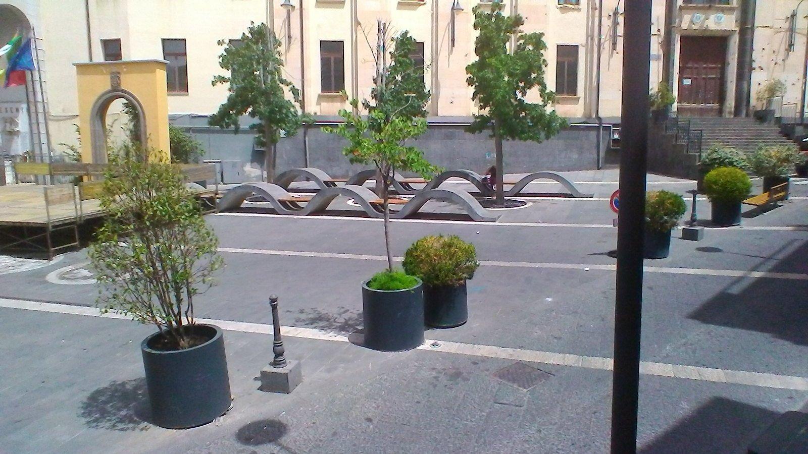 giardinetti con piante