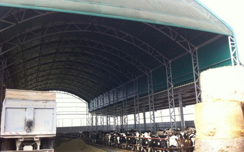stalla per bufale