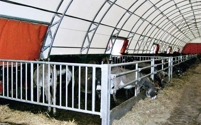 riparo bestiame