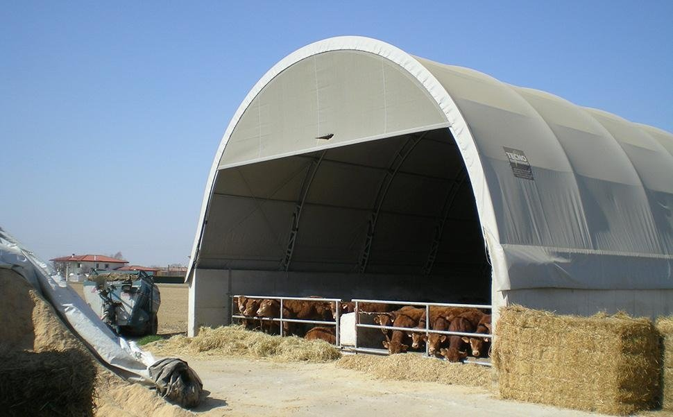 tunnel per bestiame