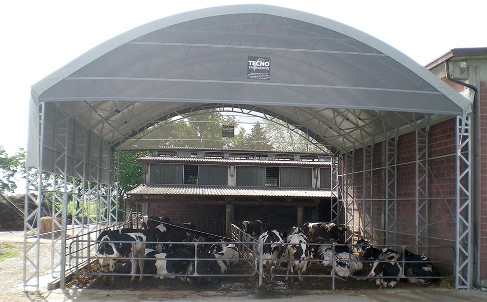 stalla per mucche