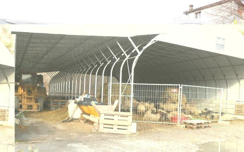 stalla bestiame