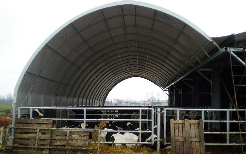 copertura bestiame
