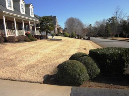 Lawn Maintenance Greer, SC