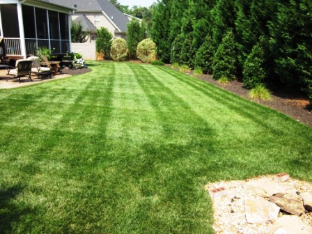 Lawn Maintenance Greenville, SC