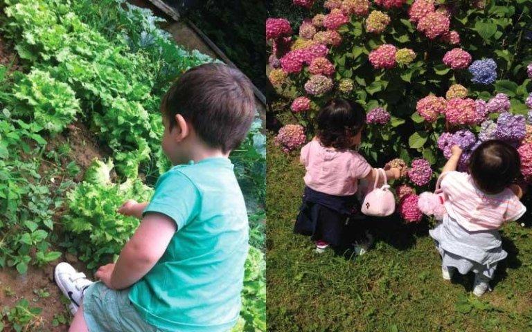 Giardinaggio per bambini Torino