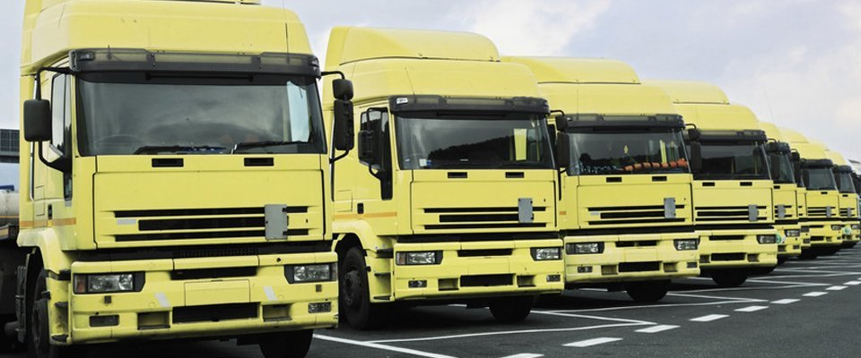 fleet of yellow lorries