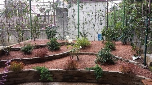 servizi giardino