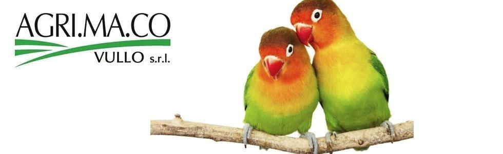 alimenti per uccelli