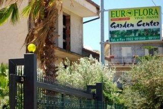 vendita piante mediterranee