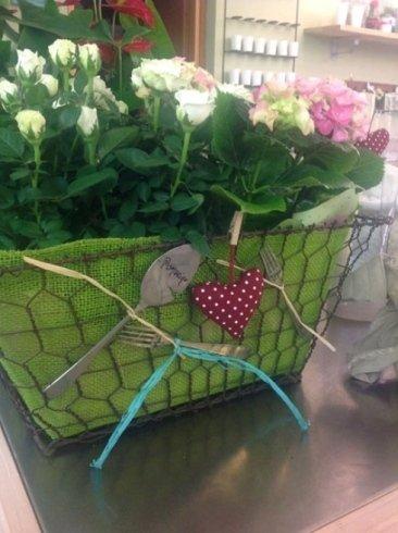 un cestino verde con delle piante di rose