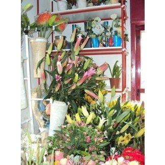 esposizione fiori per cimiteri