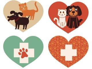 novità veterinaria