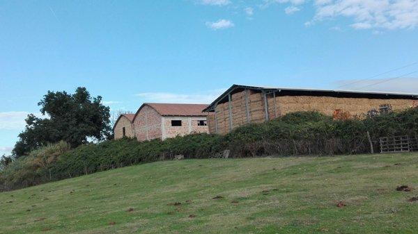 vista della casa in paesaggio campo verde