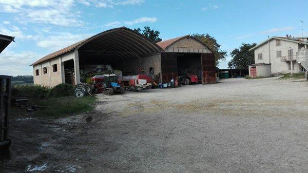 macchine agricole all'azienda agricola spallacci marco in Castelleone Di Suasa