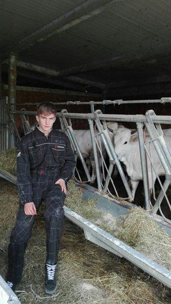uomo con le mucche