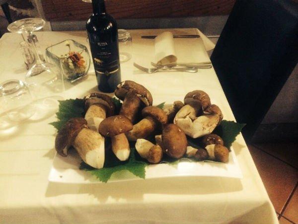 funghi e vino