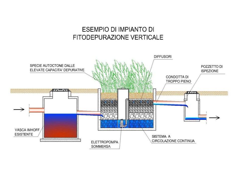 grafico fitodepurazione