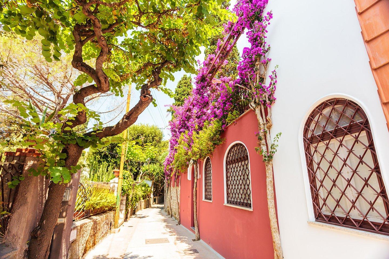 strada fiorita di un piccolo borgo